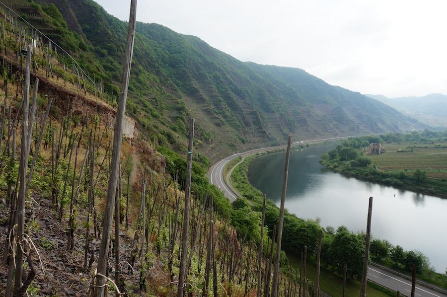 Moselle-Calmont-Arp-vins-et-vous